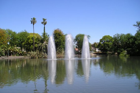 Queens Park Lake – Moonee Ponds, Victoria